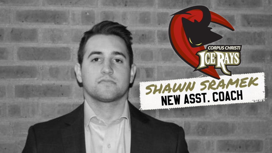 SRAMEK NAMED ICERAYS ASSISTANT COACH
